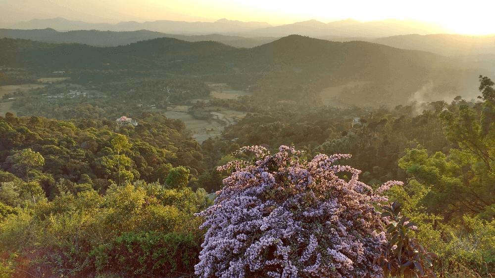 Coorg – Karnataka